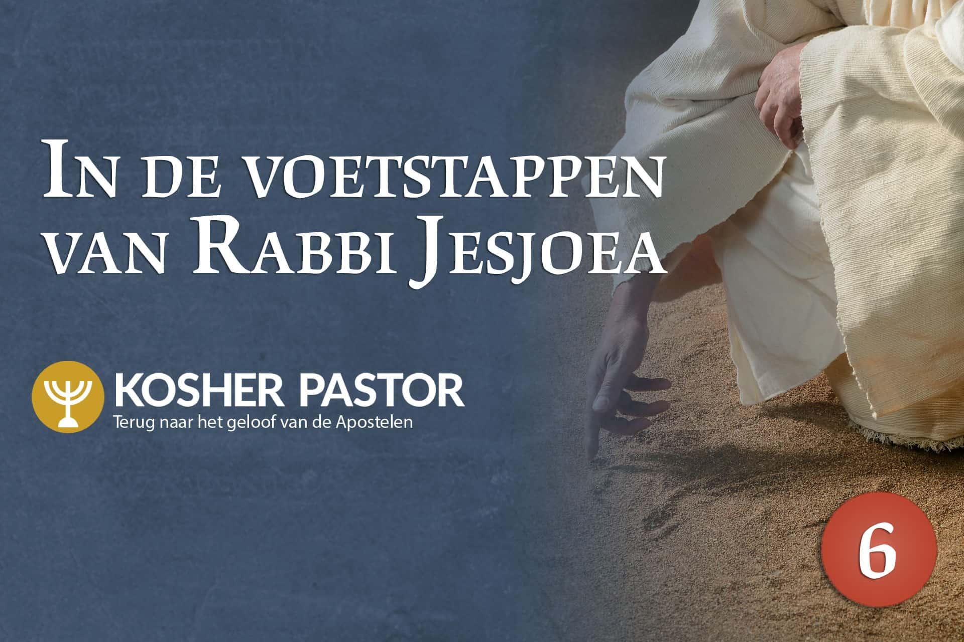 cover_kosher_pastor_DUT_module_6