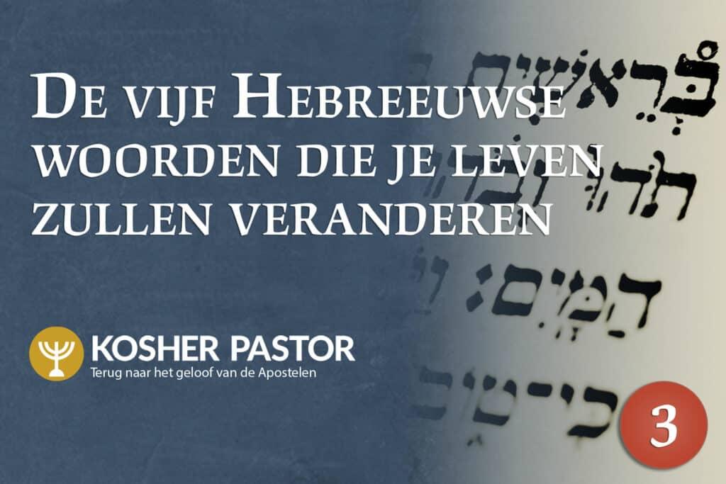 cover_kosher_pastor_DUT_module_3_new